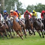 Freuen Sie sich auf spannende Pferderennen beim Ostsee-Meeting in Bad Doberan - wie auf diesem Bild zu sehen.