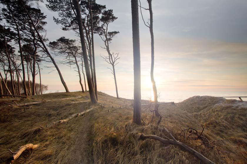 Verbringen Sie Ihren nächsten Urlaub doch ganz einfach auf der Halbinsel Fischland-Darß-Zingst in Mecklenburg-Vorpommern.
