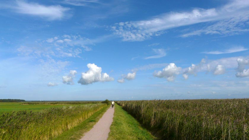 Die Boddenlandschaften sind beim Urlaub in Vorpommern immer einen Besuch wert.